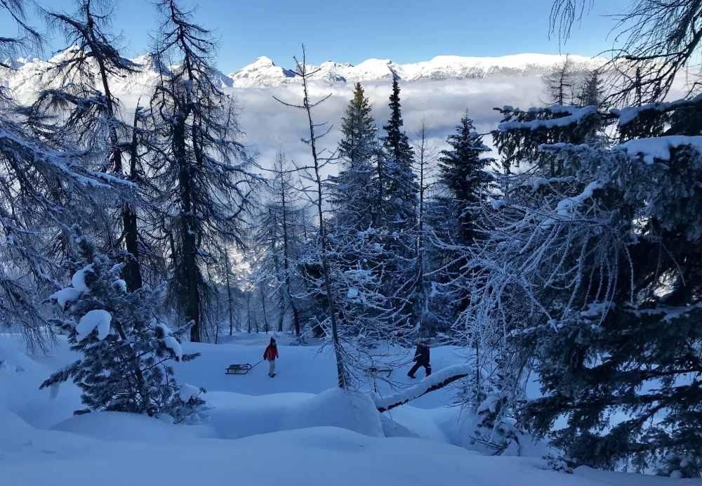 Am Kellerjoch rodeln - es ist die längste Rodelbahn in Tirol