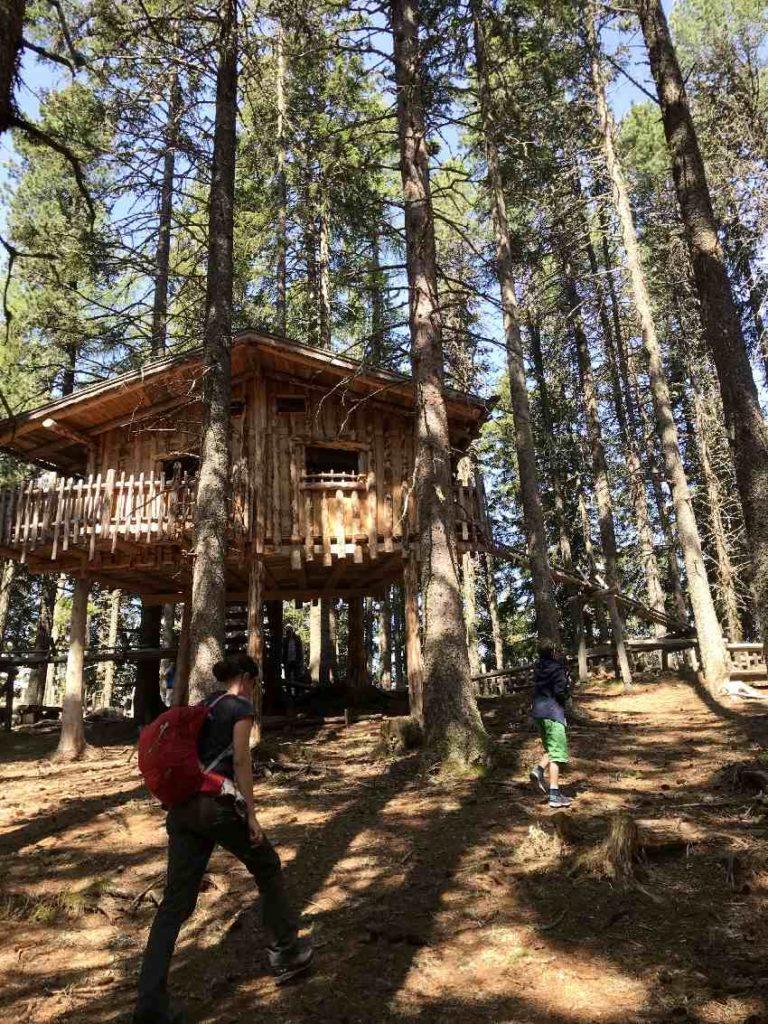 Kugelwald Glungezer - mittendrin ist auch ein Baumhaus