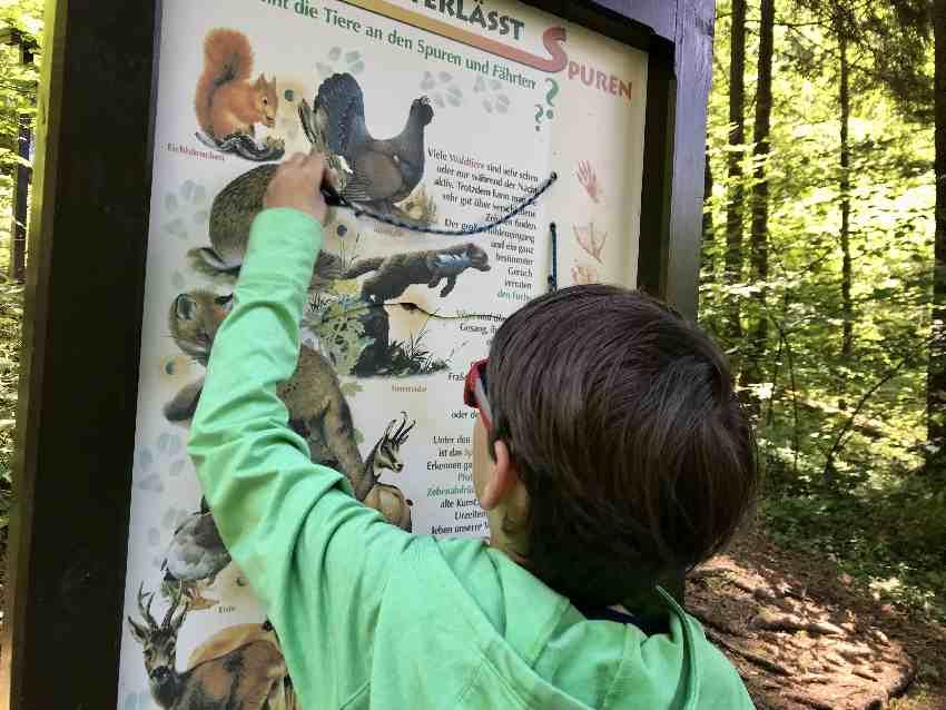 Naturlehrpfad Zillertal mit Kindern
