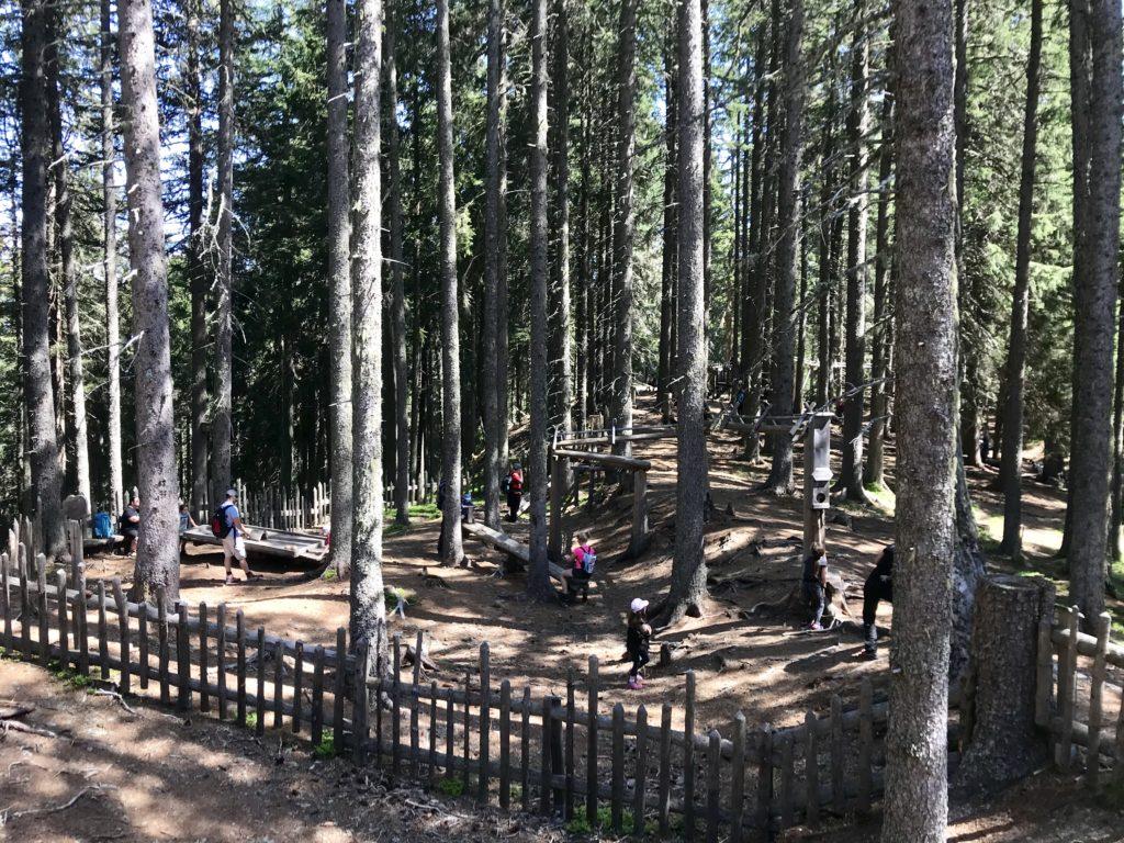 Der Kugelwald - ein riesiger naturnaher Spielplatz in Tirol