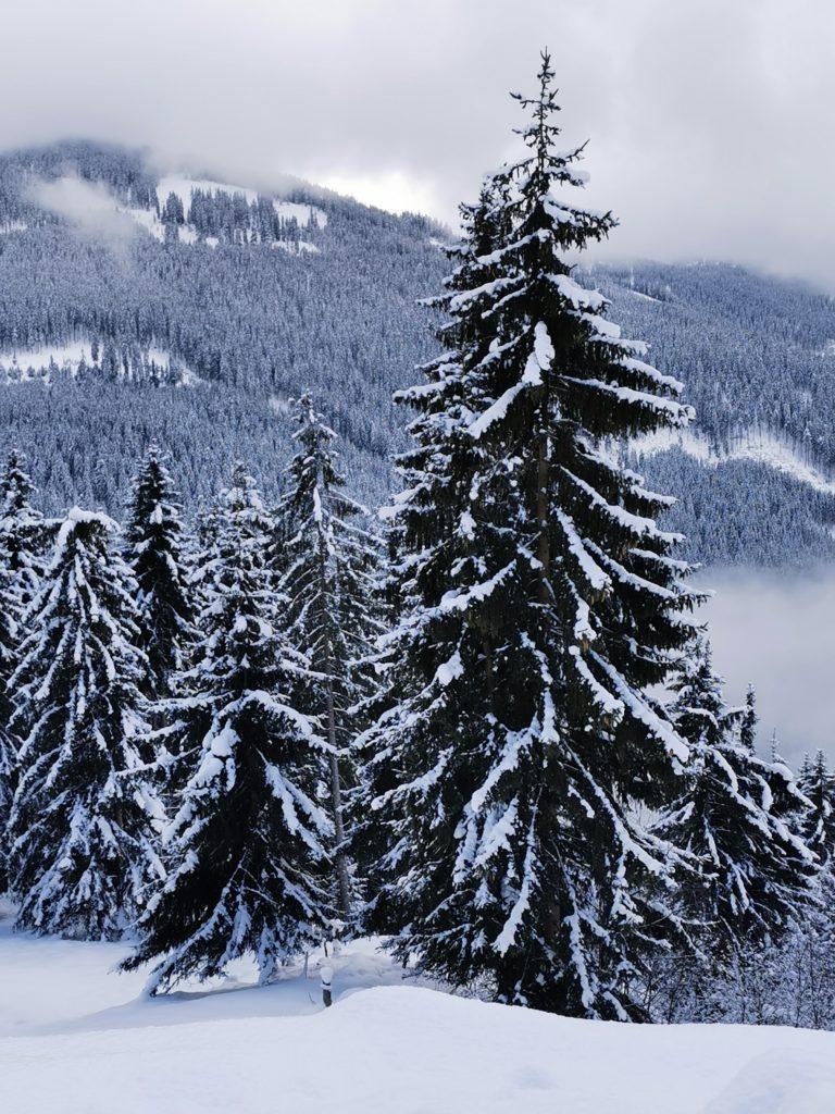 Auch das ist Winter in Tirol - Ruhe und Entspannung im Schnee fern der Piste