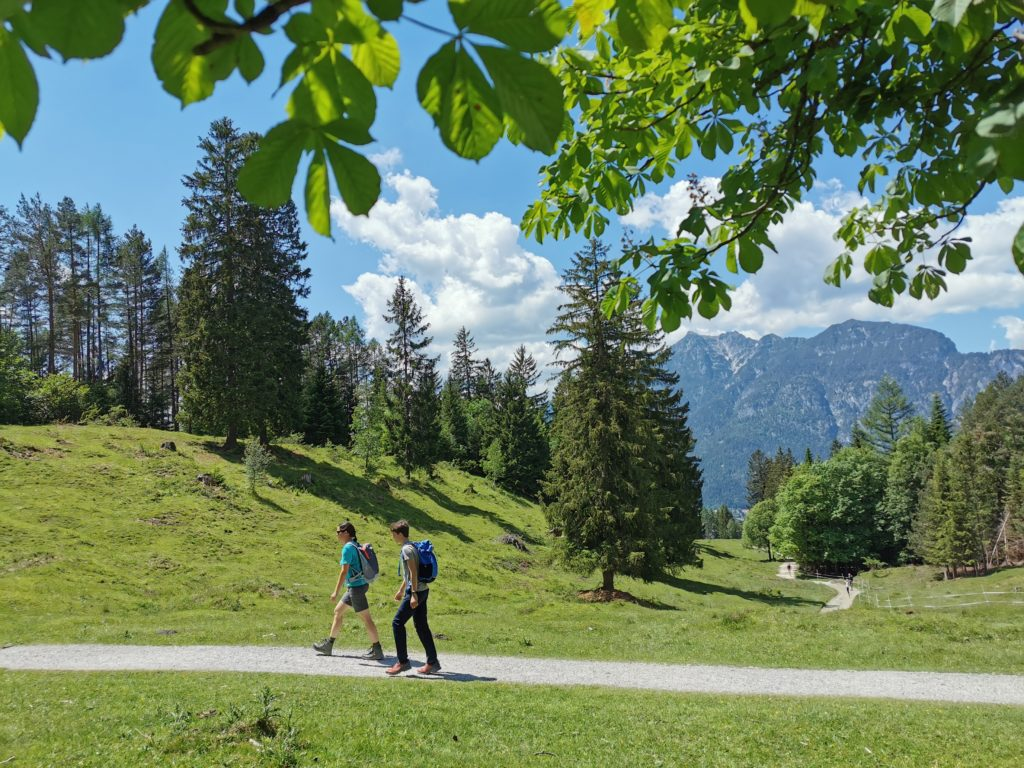 Aussichtsreiche Tannenhütte Wanderung und sehr leicht zu wandern!