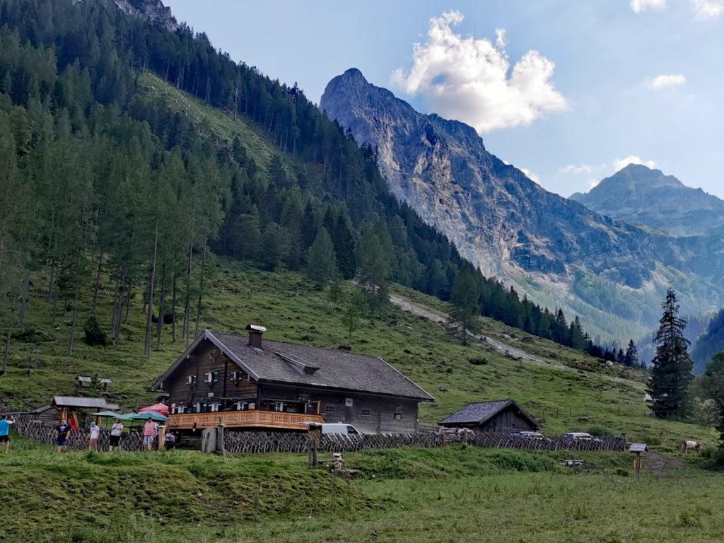 Die Marchbachalm am Talschluß - als MTB Tour ab Flachau oder als Wanderung ab Flachauwinkl