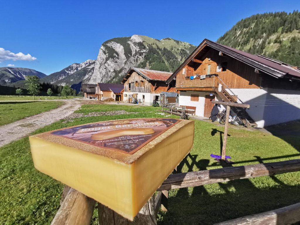 Tirol Reiseziele - die Engalm am Großen Ahornboden: Den almeigenen Käse musst du unbedingt probieren!