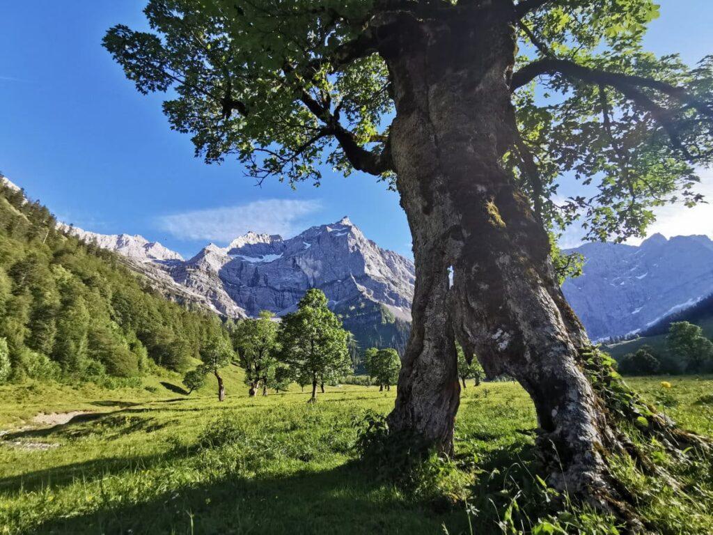 Reiseblogger Tipp Österreich - Besuch den schönsten Platz in Tirol