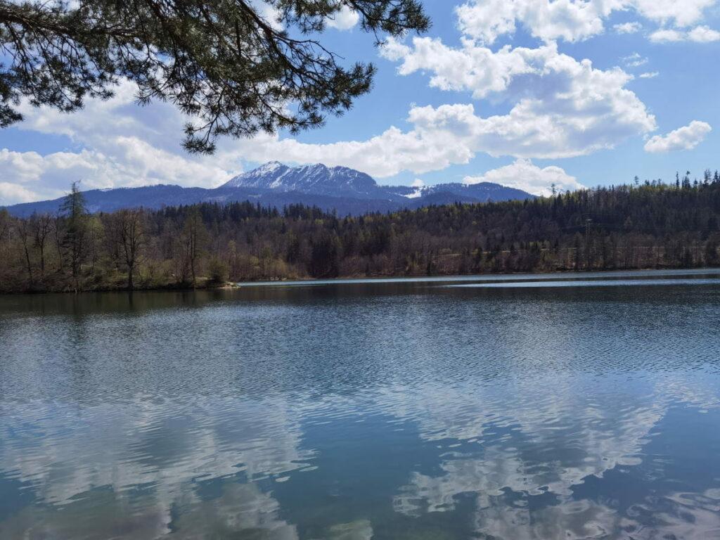 Reintalersee - leichte Frühlingswanderung einmal rund um den See in Tirol